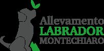 Labrador di Montechiaro